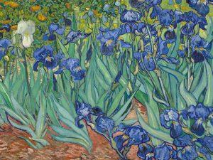 irises-by-van-gogh-wall-mural-plain